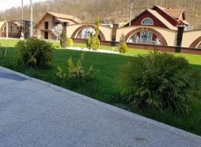 Postavljanje tepih trave i uredjenje vrta 11