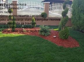 Postavljanje tepih trave i uredjenje vrta